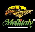 Logo Meilitaly.com